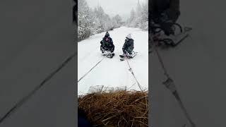 Зимние развлечения*