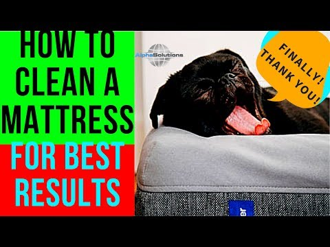 How To Remove Stains From Mattress/How To Clean Mattresses (GREAT RESULTS!) Remove ANY TYPE OF STAIN