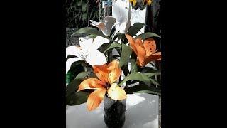 Flor de Lírio em garrafa PET – Aula 1