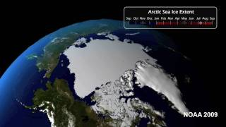 2009 Sea Ice Update