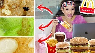 ASÍ SE VE UN BIG MAC BAJO UN MICROSCOPIO