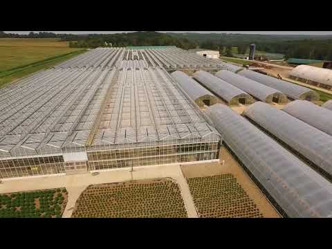 Eagle Creek Growers - Outside the Greenhouse Drone Video
