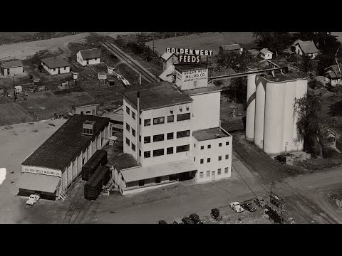 The Story of the Golden West Mill in Longmont Colorado