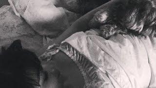٩(̾●̮̮̃̾•̃̾)۶Домашний влог٩(̾●̮̮̃̾•̃̾)۶(, 2015-11-08T12:23:09.000Z)