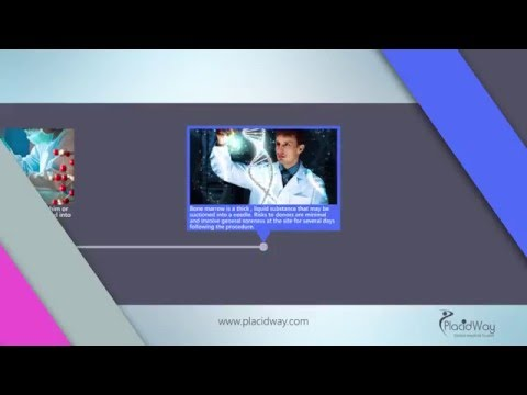 Bone Marrow Stem Cell Therapies - Bone Marrow Transplant