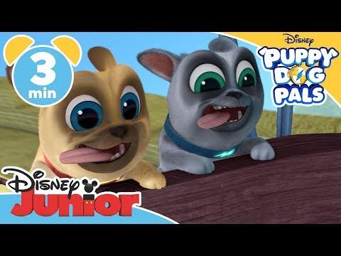Puppy Dog Pals | Who Stole Mona Lisa?! - Magical Moment | Disney Junior UK