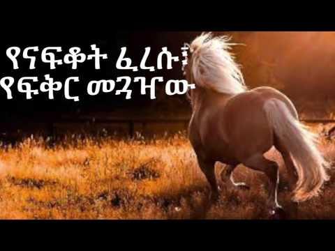 MAHMOUD AHEMED Yetizitawoch Tizita - Lyrics