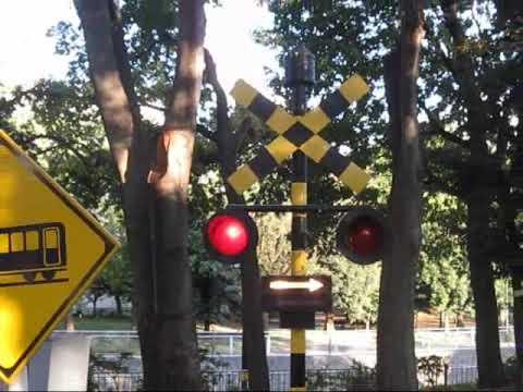 杉並児童交通公園 踏切警報機 鳴動