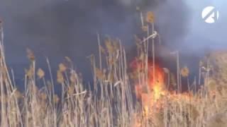 В черте Астрахани снова горят камыши