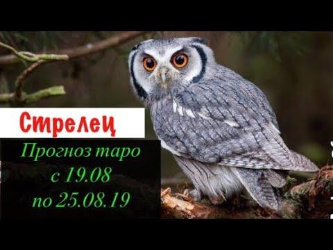 Стрелец гороскоп на неделю с 19.08 по 25.08.19 _ Таро прогноз