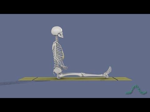 Yoga Poses: Dandasana, Staff Pose