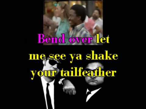 Karaoke  - Blues Brothers   Shake your tail feather