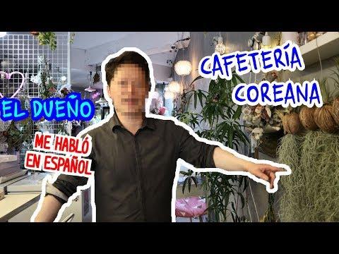 CONOCE ESTA BELLA CAFETER�A COREANA DE FLORES - CAFECEANDO | CAF� JUSEYO
