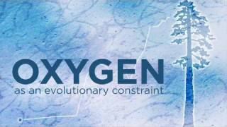 Oxygen as an evolutionary constraint - Evolution in the News