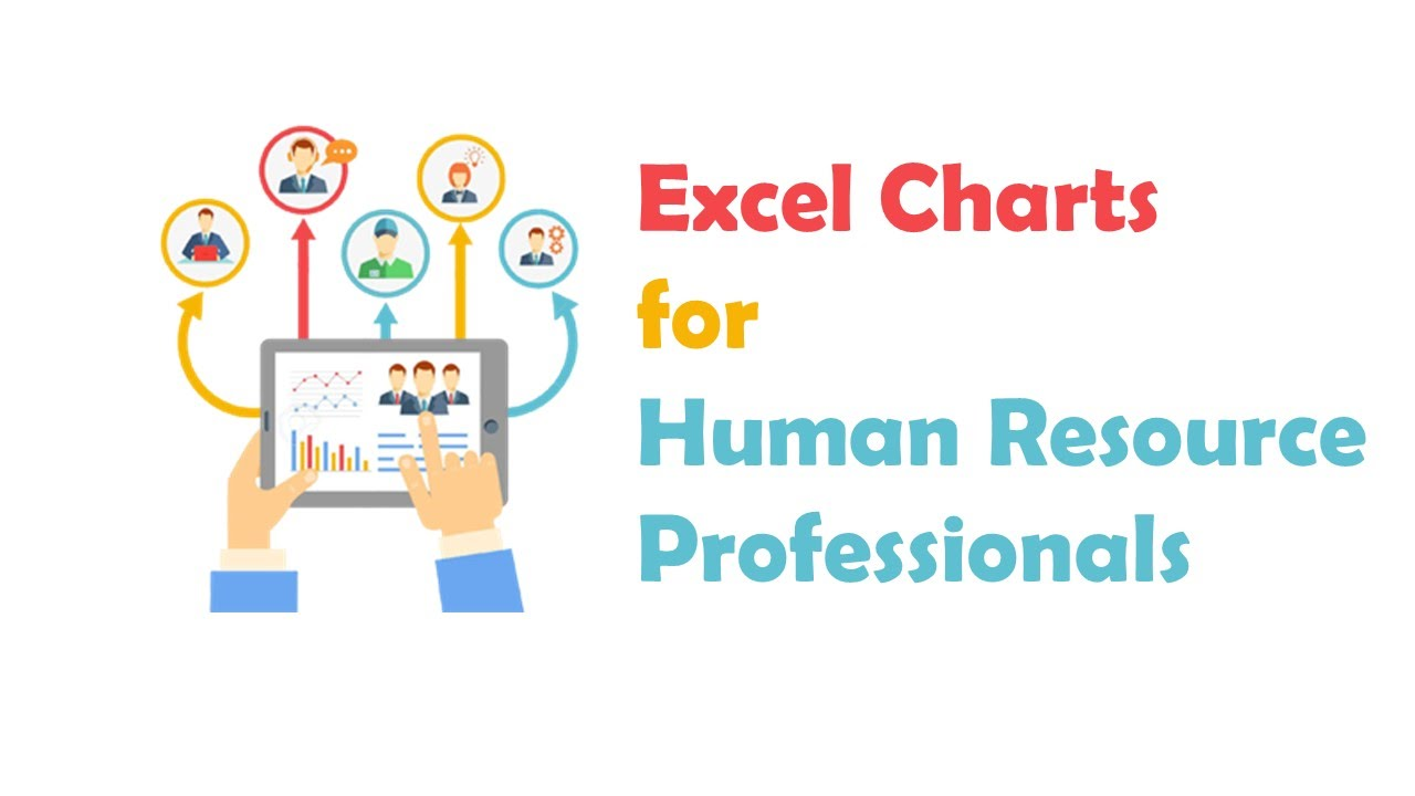 Excel HR Dashboard   Chart For HR Professionals   YouTube
