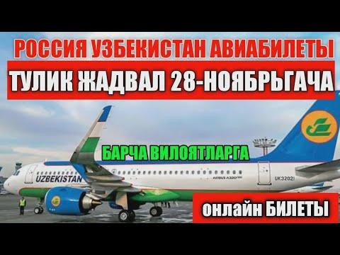 🛫Россия Узбекистон  АРЗОН билет авиабилеты | 28-ноябргача авиарейслар жадвали #hayotbek_ahmedov