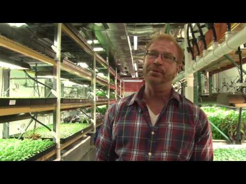 Philadelphia Neighborhoods: Vertical Farming