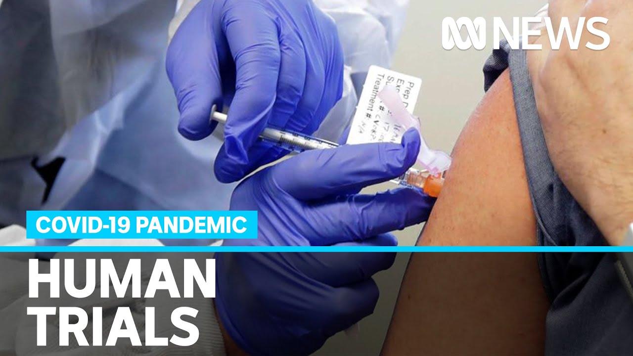 Human trials begin on coronavirus vaccine developed by University of Queensland | ABC News