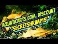 Unboxing From The Brand New Aquatic Arts HQ+ New Discount Code! L144(a) Plecos, Plants & Panda Garra
