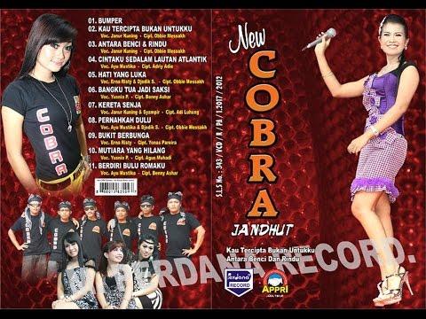 Kau Tercipta Bukan Untukku - New Cobra Tembang Kenangan [ Official ]