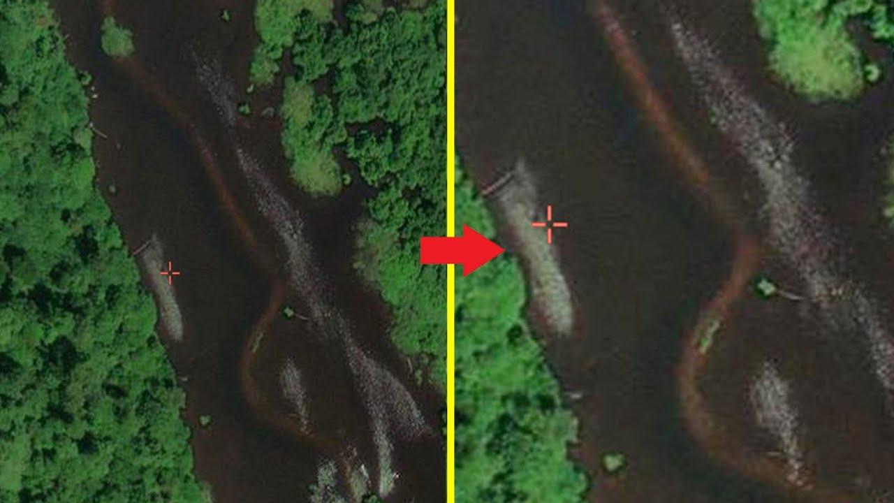 Ditemukan Ular Terbesar Di Dunia Oleh Google Map Diduga Titanoboa Real Atau Fake Kita Buktikan Youtube