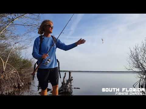 Florida Everglades National Park Adventure - Bear Lake