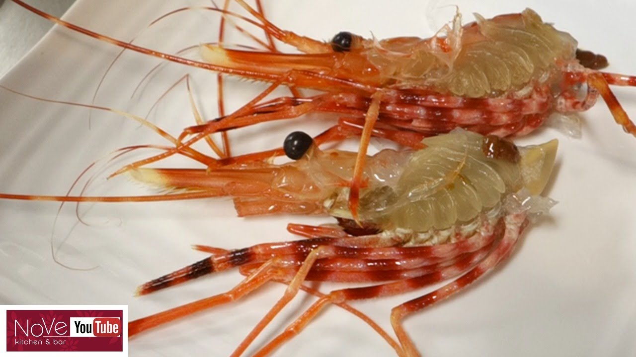 Graphic Live Shrimp Sushi And Live Shrimp Tempura Sushi Ten Youtube