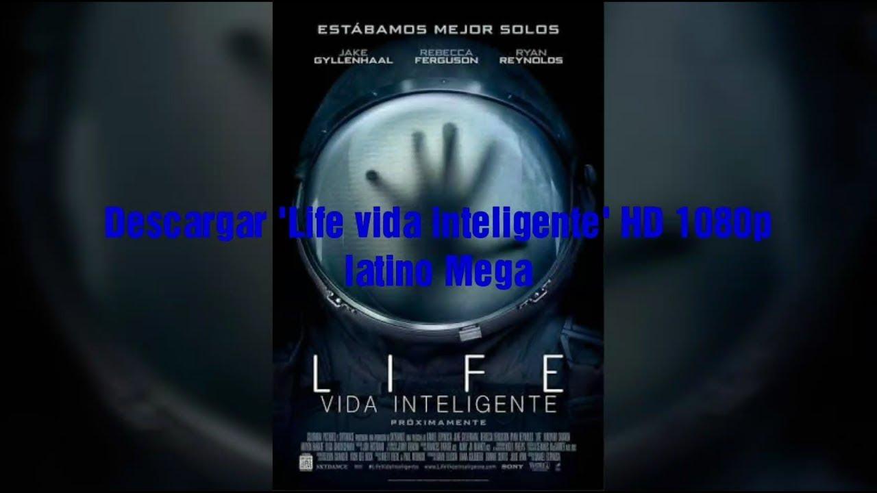 Life: Vida Inteligente - Descargar - cinelatino