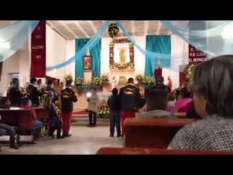 Banda guadalupana serenata a la virgen