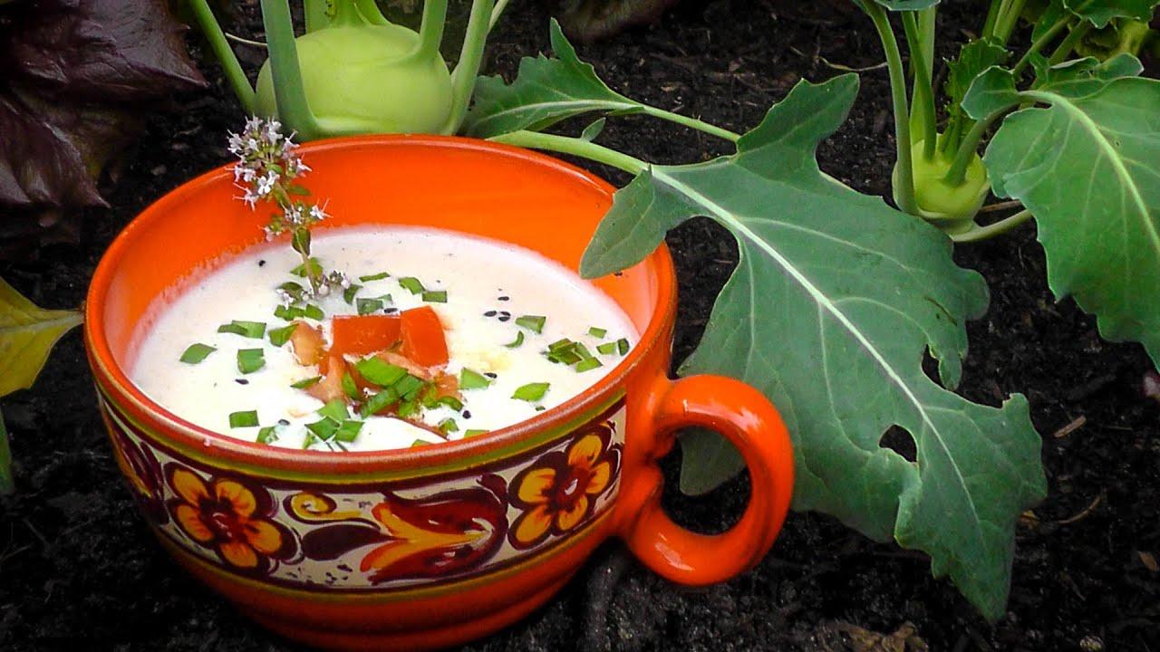 Sommer Küche Rezept : Kohlrabisuppe rezept leichte sommerküche der bio koch
