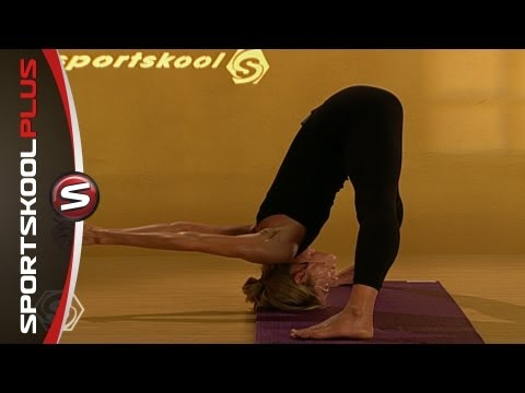 Yoga Vinyasa Flow Level 2 to 3 with Erika Schnicke