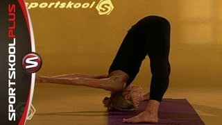 Yoga Vinyasa Flow Level 2 to 3 with Erika Schnicke