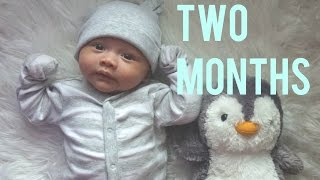TWO MONTHS!!!- #MIGHTYDUCKVLOG OCTOBER 26, 2015