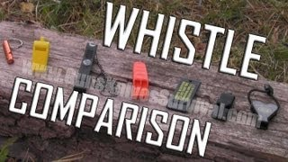 """""""Survival"""" Whistles: Comparison and Review"""