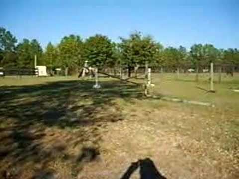 Rock Eagle-trotting poles