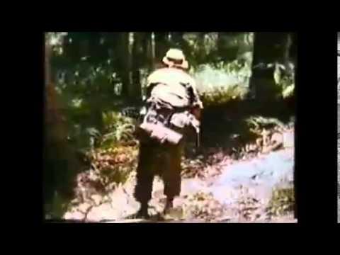 Pendudukan Jepun di Tanah Melayu (5/18)[2/20]-Keganasan Komunis(MPAJA)Selepas Jepun Menyerah Kalah