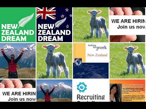 Immigrate Study Invest Work (Nurse JOBS) Migrate To New Zealand