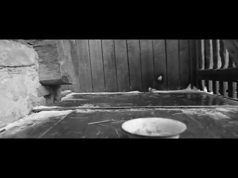 история про одного пса скачать песню