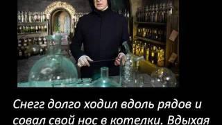 гарри поттер юмор цитаты из фанфиков))