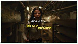 Bilderbuch - Spliff/Split