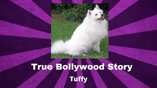 Tuffy   True Bollywood Stories