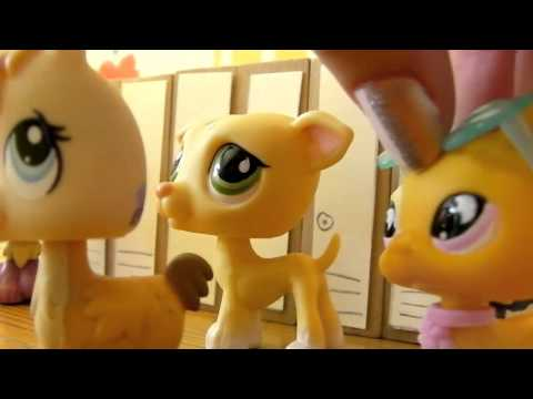 LPS: Cool [Season 2] - Episode 6 (The New Girl)