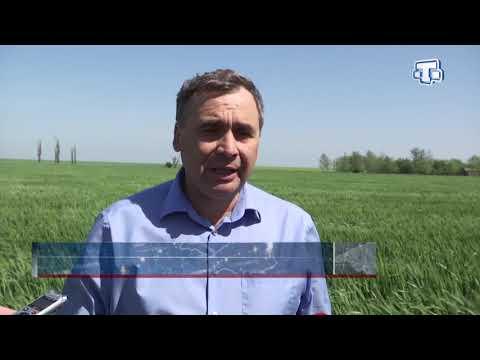 Развитие фермерства в Крыму