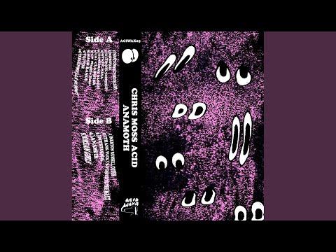 Cladistics (Original Mix)