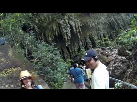 Camuy Caves, Puerto Rico 2017