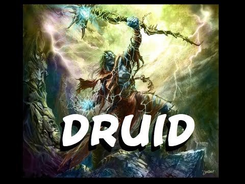 Dungeons and Dragons: The Druid