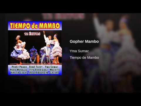 Gopher Mambo