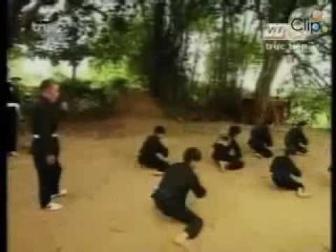 Võ cổ truyền Bình Định