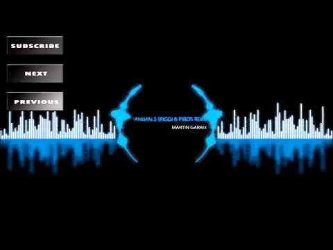 Martin Garrix - Animals (Riggi & Piros Remix) [Progressive House]