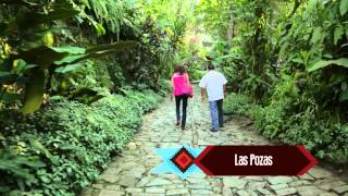 INGREDIENTS FOR A GOOD LIFE - Xiltla, San Luis Potosi - Travel Mexico with Amanda Martinez